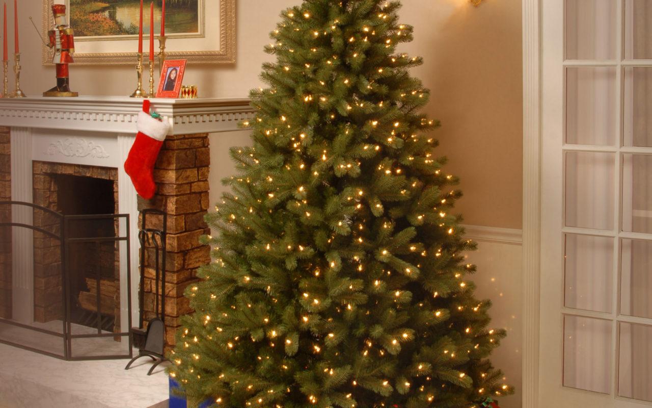Albero Di Natale Vero.Albero Di Natale Vero O Finto Indiscreto